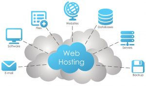 Domain hosting company