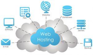 Domain hosting company